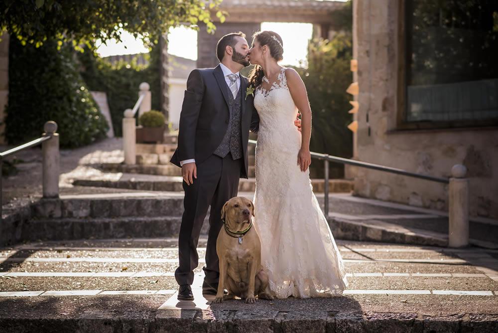 Bodas con Perro 🐶 ¡¡ Mascotas Bienvenidas !! ❤️