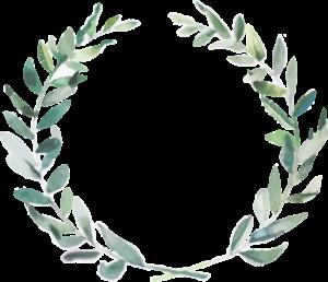 olivo-decoracion